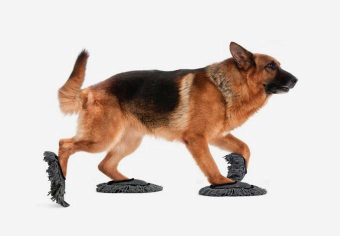 Как связать тапочки для собаки