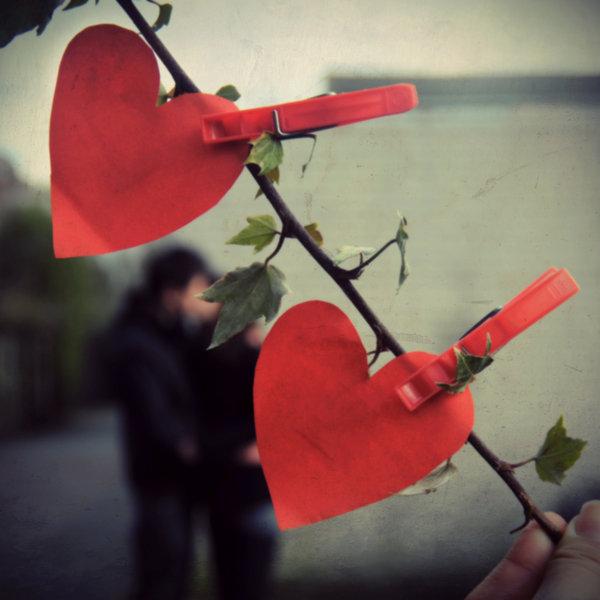 Сердечки на дереве и парочка на заднем